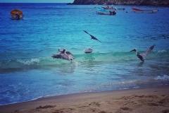 Playa Chichiriviche